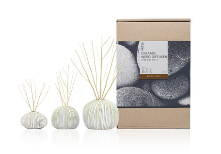 Ceramic Diffuser Set 240ml Himalayan Spices (Eo)