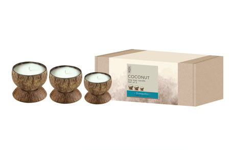 Coconut Candle Set Olive Grove